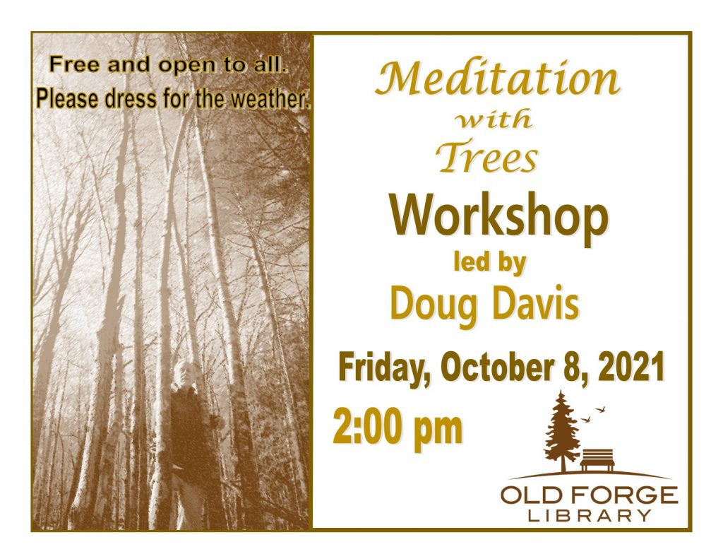 Meditation with Tree Outdoor Workshop